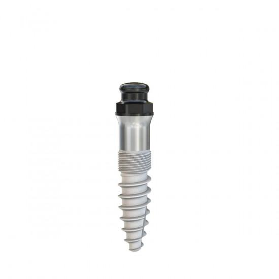 Minicone Implantat