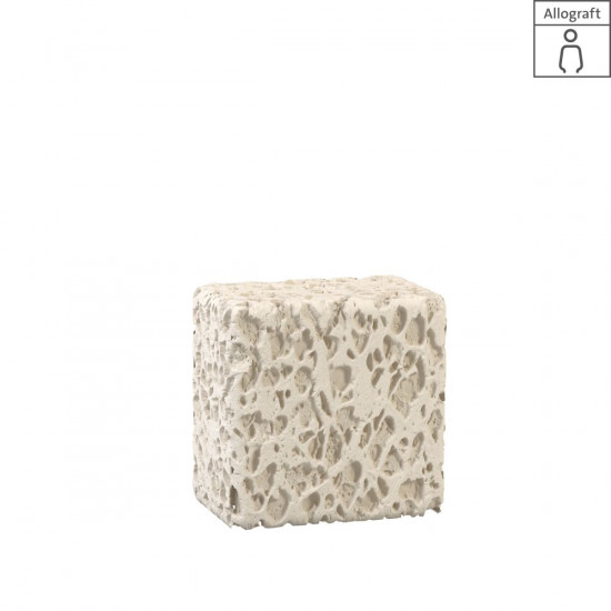 Maxgraft spongiöser Block